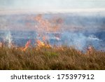 A Prairie Fire By The Road In...