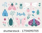 Set Of Butterflies  Bugs ...