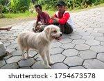 Yogyakarta  Indonesia   June 1...