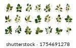 gold leaves green tropical...   Shutterstock .eps vector #1754691278