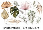 Dried Palm Leaves. Watercolor...