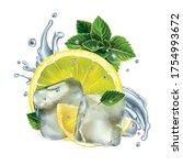 lemon slices  mint leaves and... | Shutterstock .eps vector #1754993672