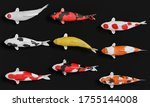 A Group Of White Koi Fish In...