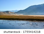 Panoramic view of the early morning mist over the National Elk Refuge just north of Jackson, Wyoming with the Flat Creek river and waterbirds in front - stock photo