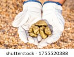 Miner Hand Holding Stones From...