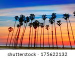 California Sunset Palm Tree...