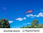 A Violet A Kite Flies Through...