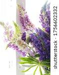 wild lupines bouquet in day... | Shutterstock . vector #1756602332