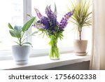 window seal decorate with... | Shutterstock . vector #1756602338