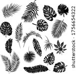 palm leaves set black and white ... | Shutterstock .eps vector #1756654322