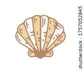 seashell vintage vector... | Shutterstock .eps vector #1757052845