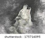 wolf  handmade illustration on... | Shutterstock . vector #175716095