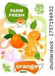 food label template. vector...   Shutterstock .eps vector #1757196932