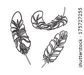 feathers sketch style.... | Shutterstock .eps vector #175727255
