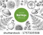 moringa hand drawn sketch.... | Shutterstock .eps vector #1757335508