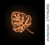 autumn orange color leaf neon...