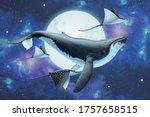 Surreal Scene Of Humpback Whale ...