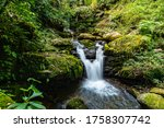 Small Waterfall In The Forest....