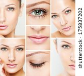 collage of a beautiful woman... | Shutterstock . vector #175837202
