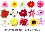 different flowers | Shutterstock . vector #175947572