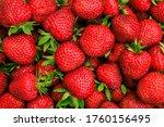 beautiful red ripe strawberries ... | Shutterstock . vector #1760156495