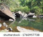 In The Jungle  A Clear River...