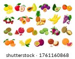 Large Fruit Collection Detaile...