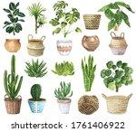 Watercolor House Plants Clipart....