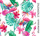 tropical flowers  orchid ... | Shutterstock . vector #1762043762