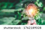 Hand Holding Light Bulb Ideas...