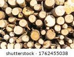 Stack Of Sawn Logs. Natural...