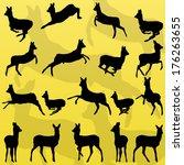 doe venison deer wild forest... | Shutterstock .eps vector #176263655