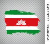 flag of  boyaca from brush...