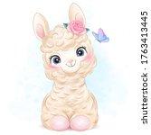 Cute Little Alpaca With...