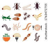 edible worms and insects vector ... | Shutterstock .eps vector #1763472755