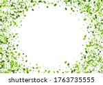 forest greens tree vector... | Shutterstock .eps vector #1763735555