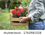 Woman Holding Wooden Crate Full ...