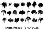 vector detailed trees | Shutterstock .eps vector #17641036