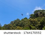 Monteverde  Costa Rica   August ...