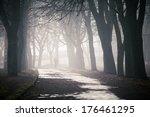Fog On A Way