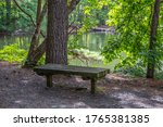 A Sitting Bench In The Shade...