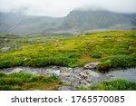 Vivid Green Alpine Landscape...