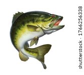bass fish jumps out of water isolate realistic illustration. Big Largemouth Bass. perch fishing in the usa on a river or lake at the weekend.