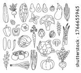 set of outline vegetables on... | Shutterstock .eps vector #1766655965