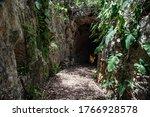 A Road Between Rock Walls