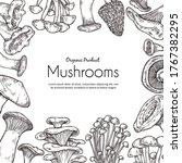 Mushroom Frame. Vegetarian Food ...