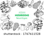 asian mushrooms sketch set.... | Shutterstock .eps vector #1767611528