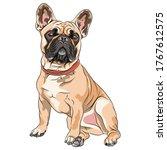 Vector Fawn Dog French Bulldog...