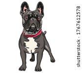 Vector Black Dog French Bulldog ...