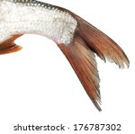 Tail Of A Fish On A White...